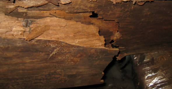 broken joists