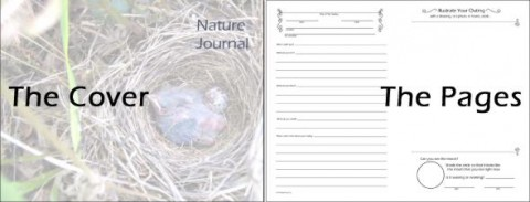 A Child's Folded Nature Journal