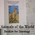 Animals of the world booklet