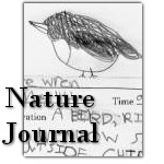 Printable Nature Journals in two sizes