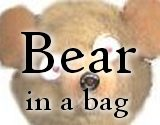 Bear-in-a-Bag Christmas Ornament